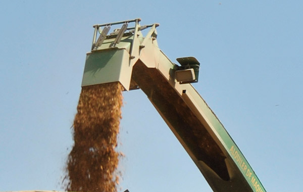 biomass chipper